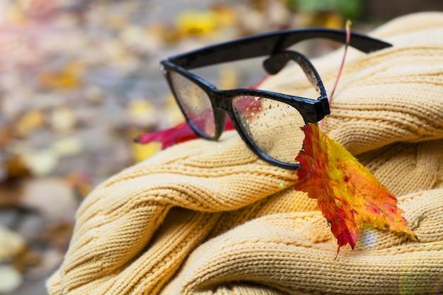 Chandail et lunettes de lecture avec feuille d'automne portant sur un banc photo de haute qualité