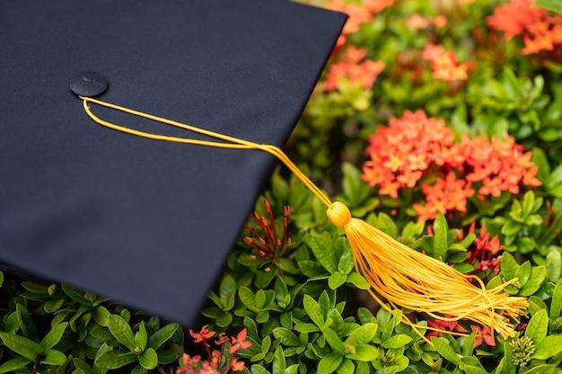 Chapeau de graduation noir placé sur une fleur en épi