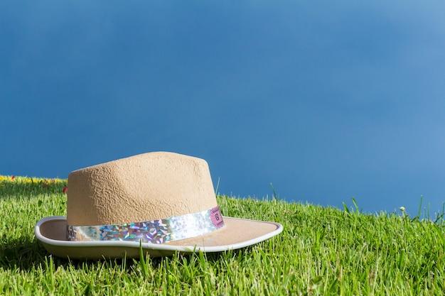 Chapeau sur l'herbe. pelouse
