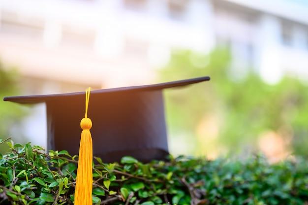 Le chapeau noir des diplômés universitaires est placé sur des feuilles vertes.