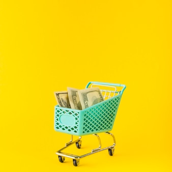 Chariot d'épicerie avec de l'argent