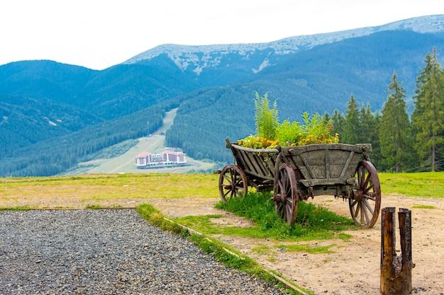 Chariot de style ancien avec buisson vert pour la décoration d'arrière-cour extérieure dans les montagnes.