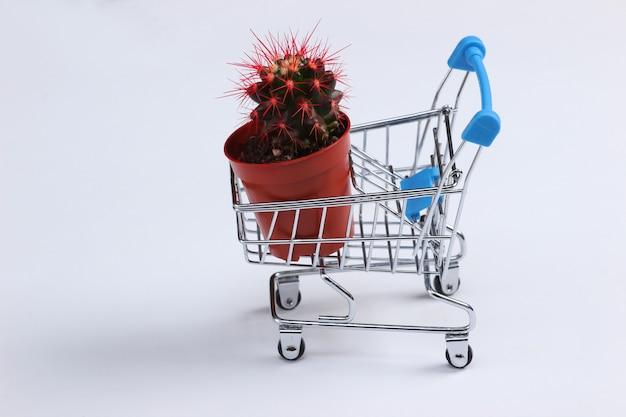 Chariot de supermarché mini avec un pot de cactus sur un blanc