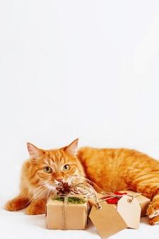 Chat gingembre mignon reniflant pile de cadeaux de noël sur blanc. cadeaux emballés dans du papier kraft avec des étiquettes de copie.