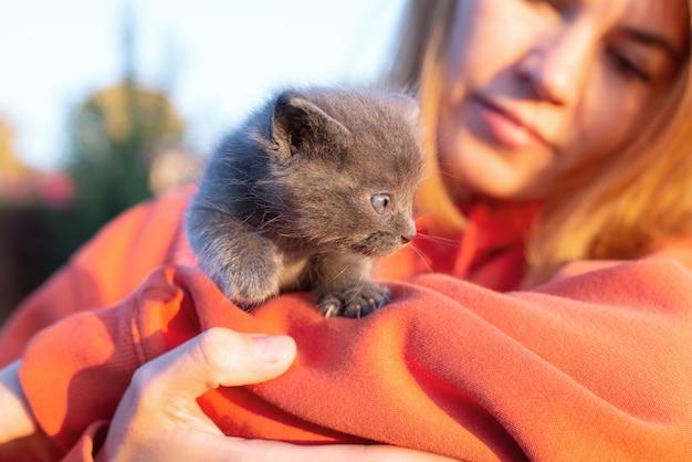 Chat gris dans les mains. chaton souriant assis dans la poche de vêtements orange. copier l'espace