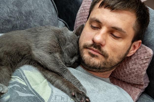 Un chat gris heureux dort, des câlins sur l'épaule, la poitrine d'un homme