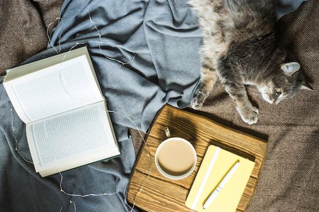 Un chat gris et moelleux sur une couverture à côté d'une tasse de café et d'un livre