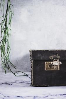 Un chat gris se trouve sur une valise noire