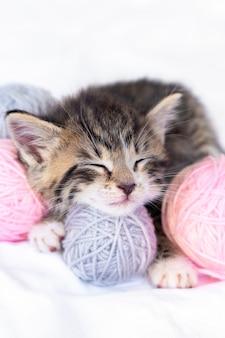 Chat mignon dormant avec des écheveaux de boules roses et grises de fil sur lit blanc