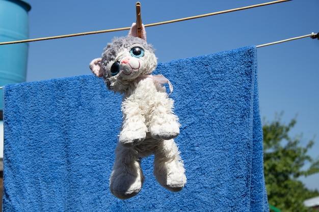 Un chat en peluche blanc-gris sèche sur une corde après le lavage en été. il pend par l'oreille.