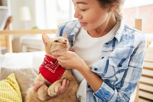 Chat portant un bandana