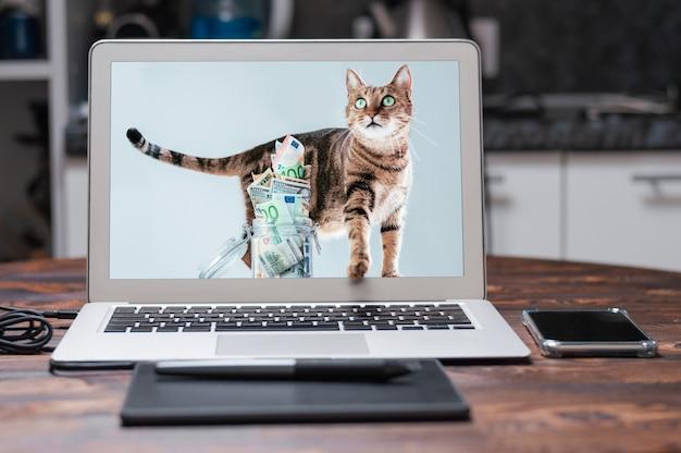 Chat posant sur le fond d'une tirelire. le concept de dépenses pour l'entretien des races d'animaux de compagnie pur-sang. technique mixte