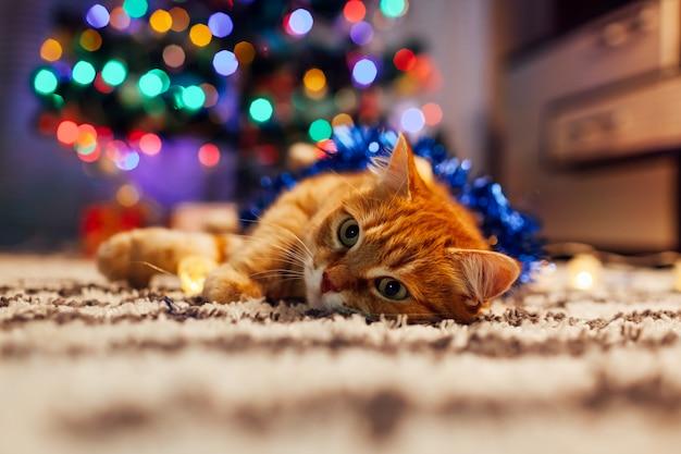 Chat roux jouant avec guirlande et guirlandes sous l'arbre de noël. concept de noël et du nouvel an