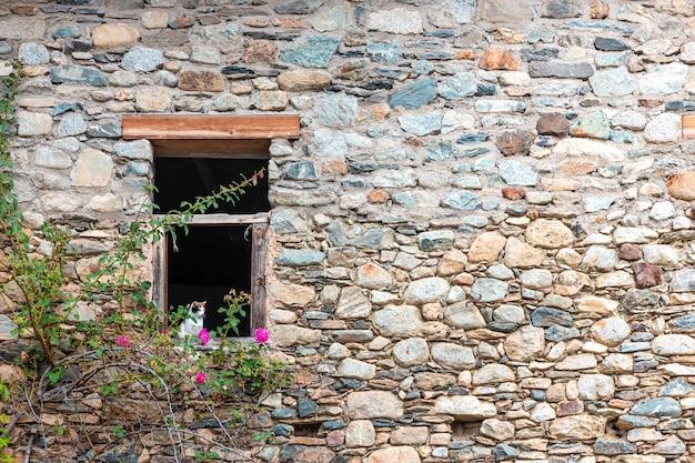 Un chat se penchant par une fenêtre dans un mur de briques