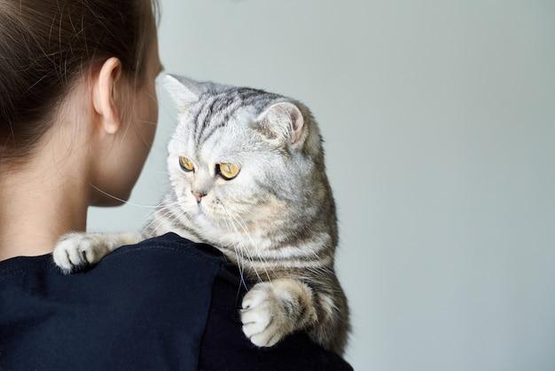 Chat tigré mignon dans les bras d'une femme méconnaissable