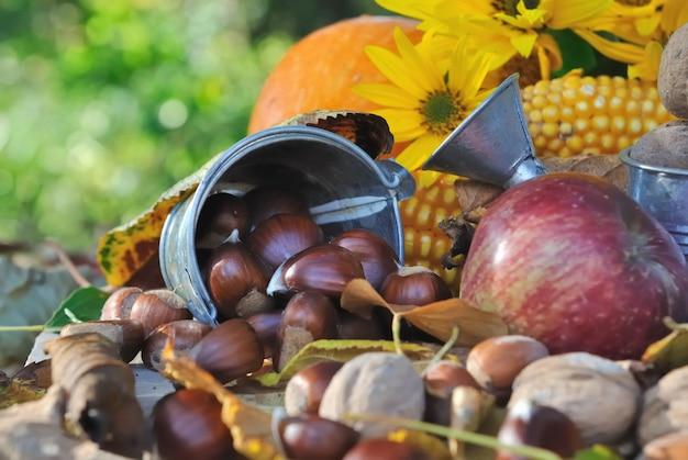 Châtaignes et autres fruits de saison