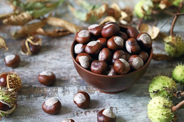 Châtaignes buckeyes. humeur d'automne. feuilles de marronnier.
