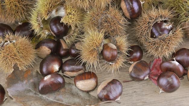 Châtaignes et coquillages frais sur une planche