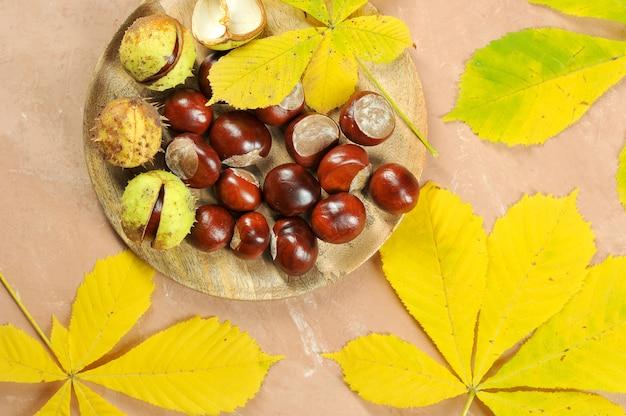 Châtaignes et feuilles d'érable