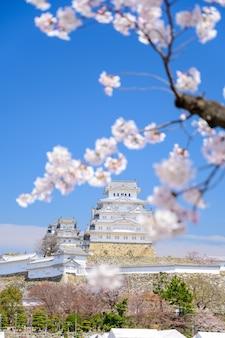 Château de himeji avec ciel bleu et sakura ou fleur de cerisier au premier plan.