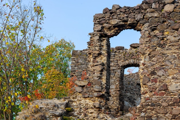 Château nevitsky à zakarpatyya en ukraine