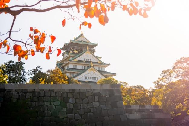 Château d'osaka à osaka avec des feuilles d'automne. concept de voyage au japon