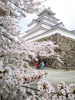 Château de tsuruga ou aizuwakamatsu avec des arbres de sakura, préfecture de fukushima, japon.