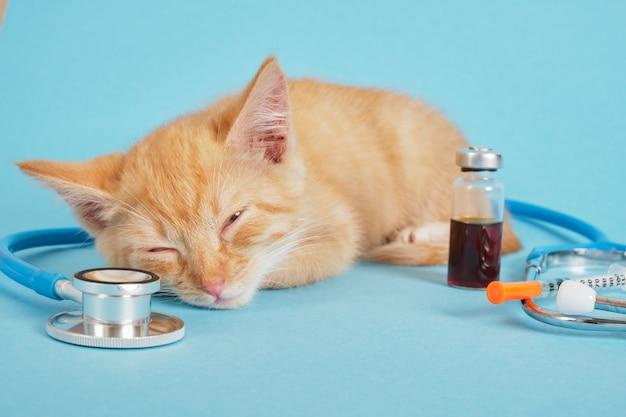 Chaton mignon de gingembre de sommeil, stéthoscope, seringue d'insuline et médecine dans la bouteille d'injection sur le fond bleu