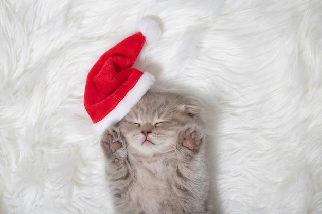 Chaton rouge en chapeau de père noël dort sur un tapis moelleux blanc