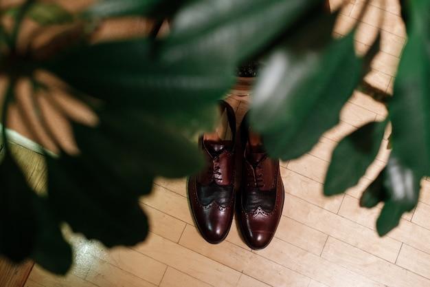Chaussures marron laquées pour hommes élégants