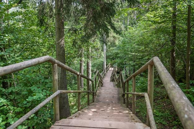 Chemin en bois et escaliers menant à la falaise staburags de rauna. lettonie. baltique.