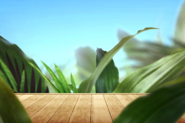 Chemin en bois avec des feuilles vertes tropicales