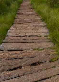 Le chemin en bois, les montagnes de l'altaï