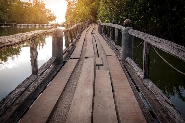 Chemin de bois passerelle sur la rivière et à travers la forêt tropicale