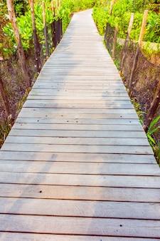Chemin en bois pour la marche