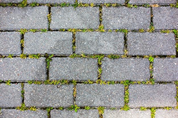 Un chemin de carreaux de béton avec fond de texture d'herbe