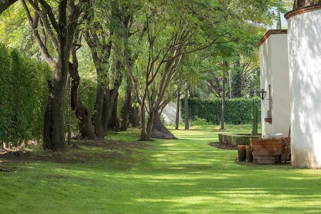 Chemin ou chemin avec de l'herbe et des arbres le long des côtés à côté d'une maison blanche