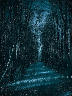Chemin de clair de lune à travers la forêt d'hiver.