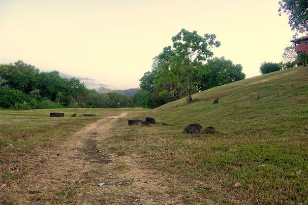 Chemin à côté de la colline au milieu avec un champ couvert d'herbe verte