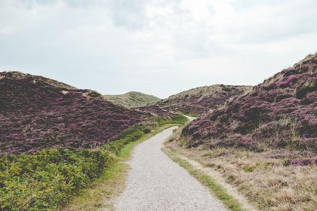 Chemin entre les collines
