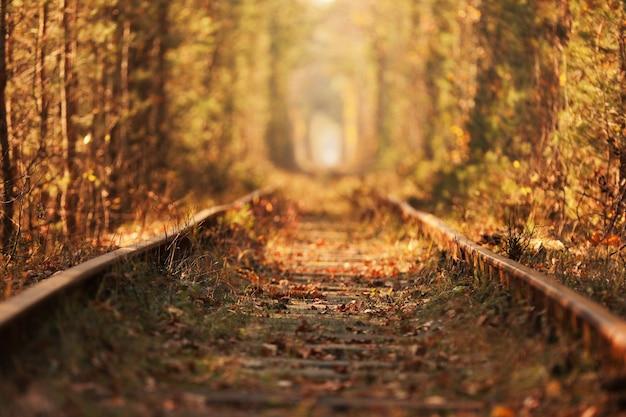 Un chemin de fer en automne