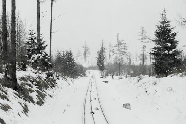 Chemin de fer et bois dans la neige