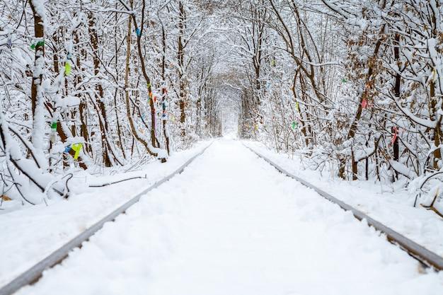 Un chemin de fer dans la forêt d'hiver