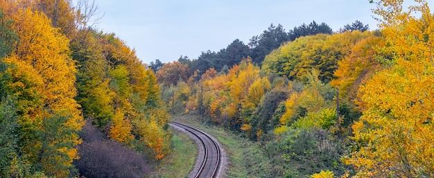 Le chemin de fer traverse la forêt d'automne avec des arbres colorés