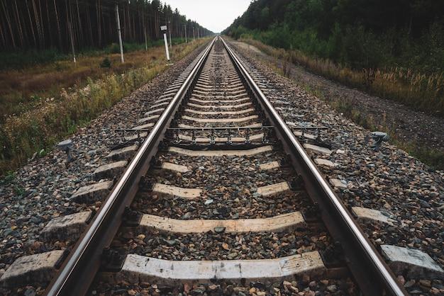 Chemin de fer voyageant en perspective à travers la forêt