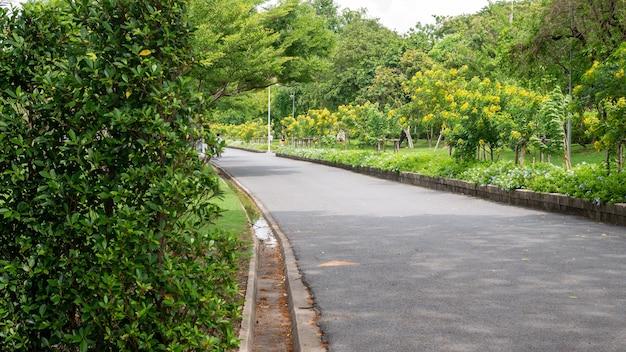 Chemin à pied dans le jardin du parc public suan luang rama ix bangkok thaïlande background2