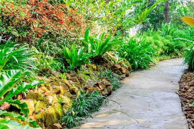 Chemin de pierre dans le jardin
