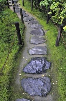 Chemin de pierre humide entre clôture en bois et sol forestier moussu