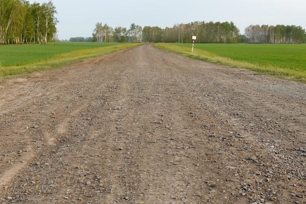 Chemin de terre dans le domaine. route rurale non pavée à travers un champ agricole