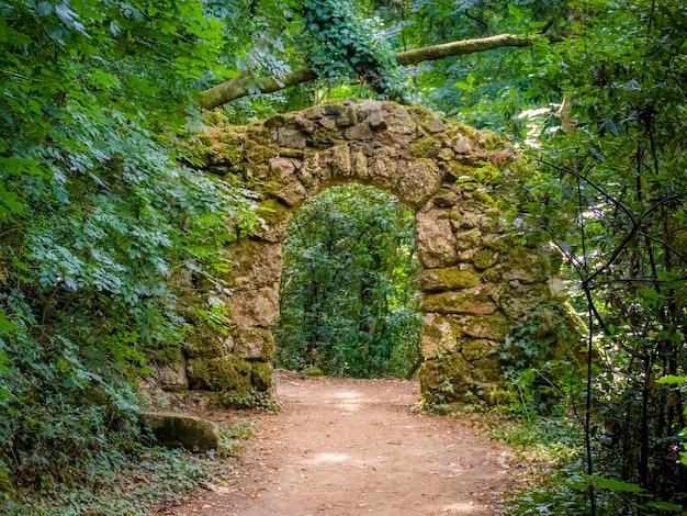 Chemin de terre dans un parc forestier en passant par une arche de pierre à serra do buçaco, portugal